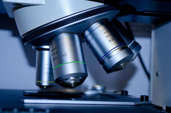 microscope-closeup